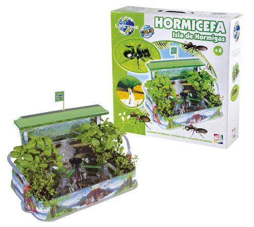 Hormicefa isla de hormigas juguetes - Casa de hormigas ...